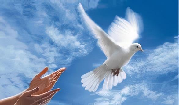 Classement de la «paix» dans chaque pays du monde