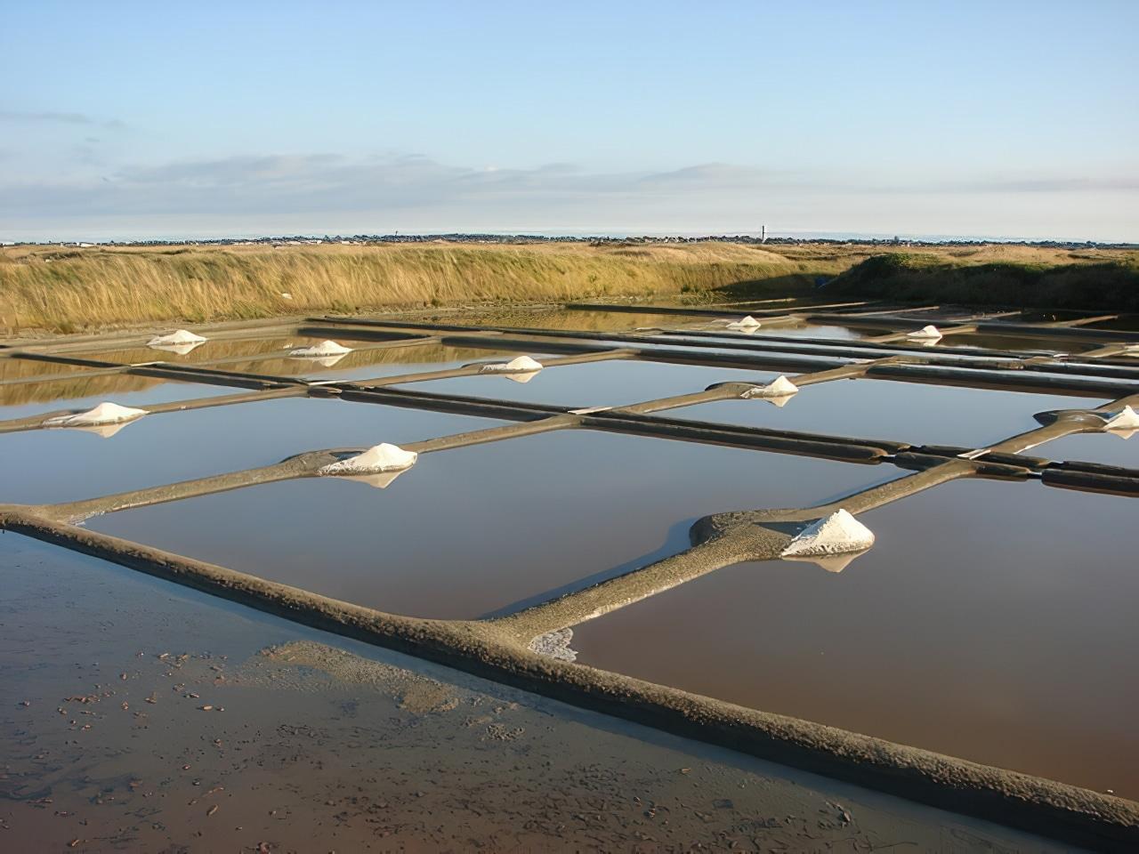 Saline dans les Marais Salants de Guérande, fleur de sel