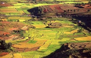 Hauts plateaux Madagascar