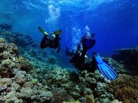 snorkeling (2)