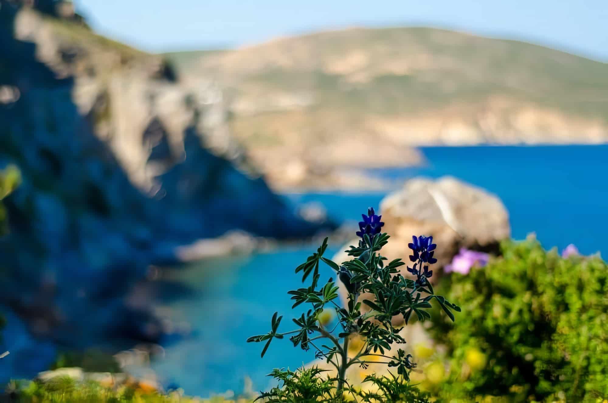 Loger Patmos