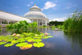 Visiter le Jardin Botanique de New York