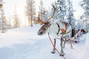 Guide voyage Rovaniemi