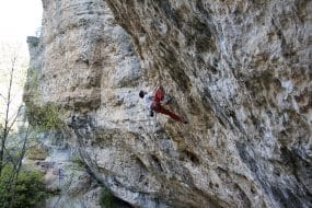 Escalade dans les Gorges du Tarn