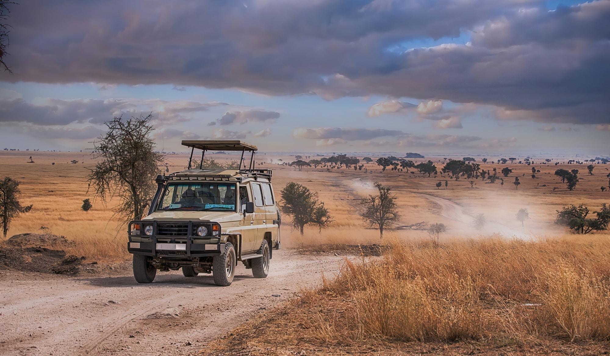 Les 14 plus beaux safaris du monde