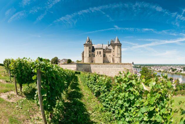 vignoble france la loire chateau de saumur