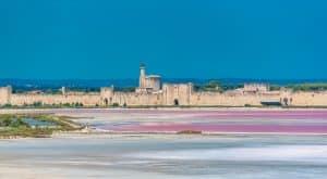 Vue d'Aigues-Mortes depuis les Salins du Midi
