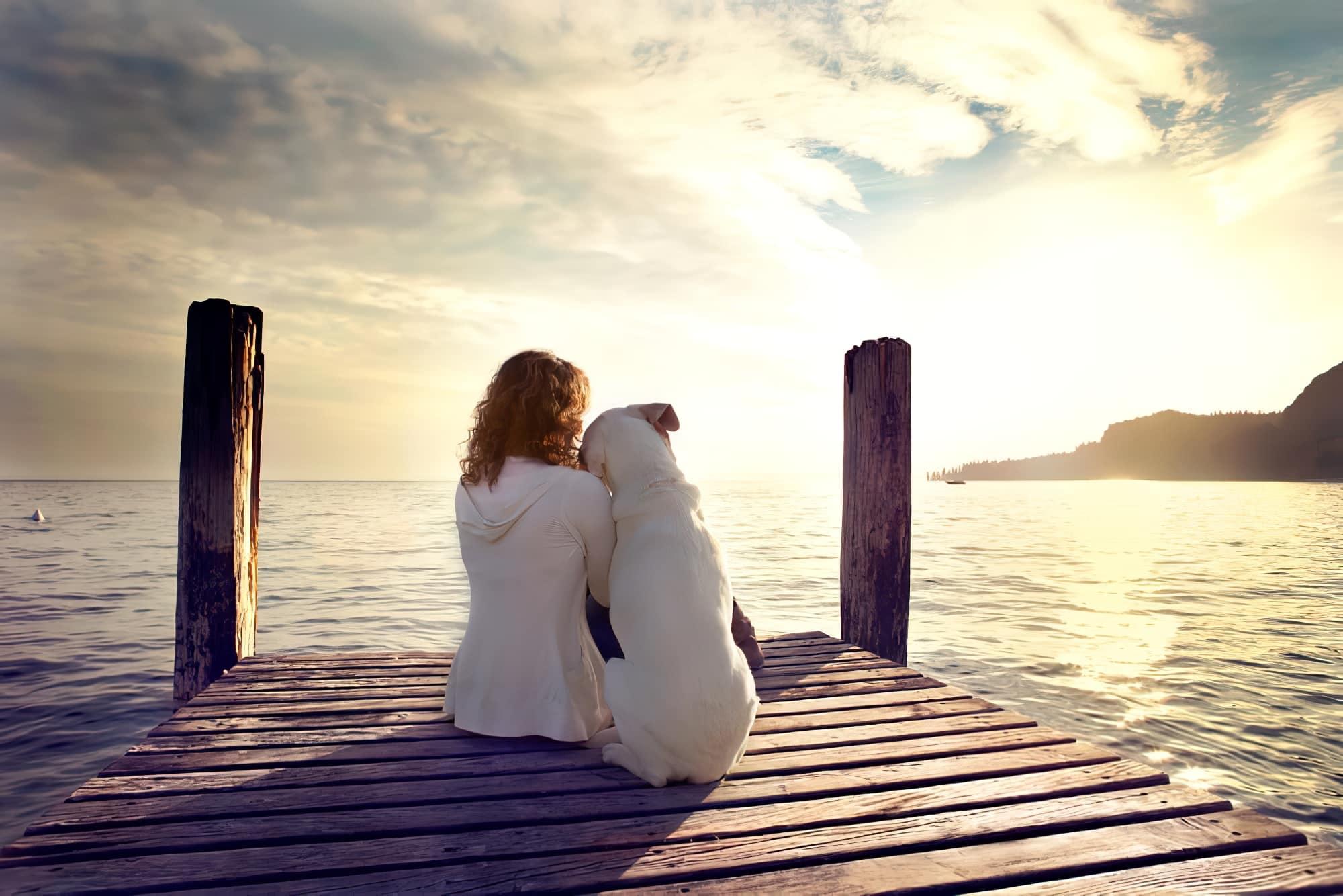11 destinations où voyager avec son chien en Europe