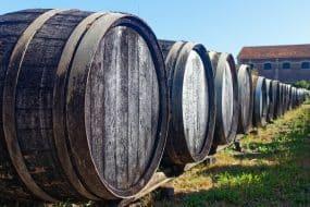 Vieux tonneaux de chêne en extérieur, visiter les vignobles de l'Armagnac.