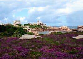 Visiter la Côte de Granit Rose