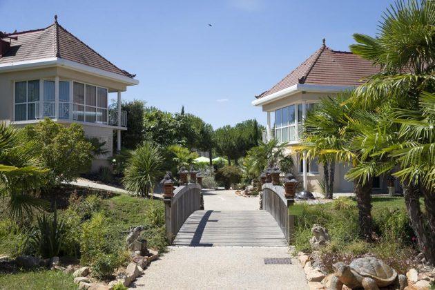 Les 7 hôtels où dormir au Zoo de Beauval