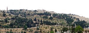 Visiter le Mont des Oliviers