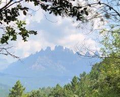 Zonza et Quenza via les sentiers de l'Alta Rocca