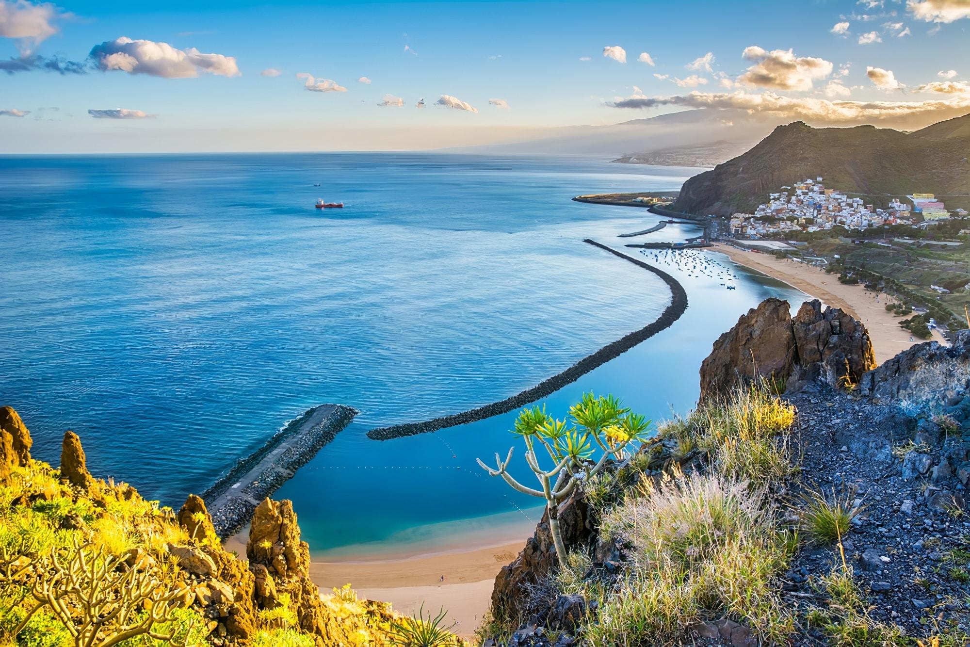 croisière observation baleines Tenerife