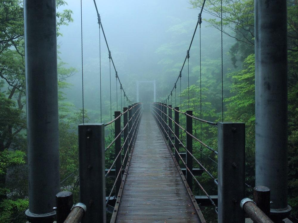Le pont suspendu de yakushima