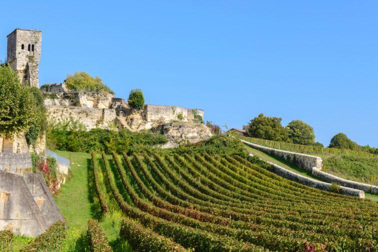 Les vignobles de Saint-Emilion, parmi les plus connus et réputés du monde
