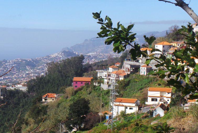 Monte - Camacha via Levada dos Tornos randonnée à Madère