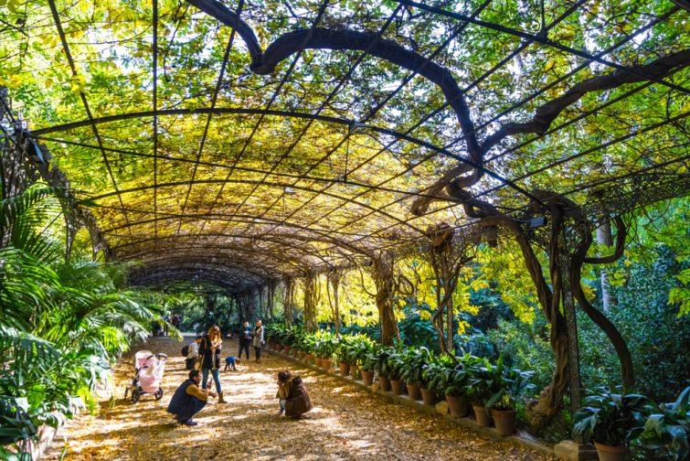 sortir à Malaga : Ciudad Jardín