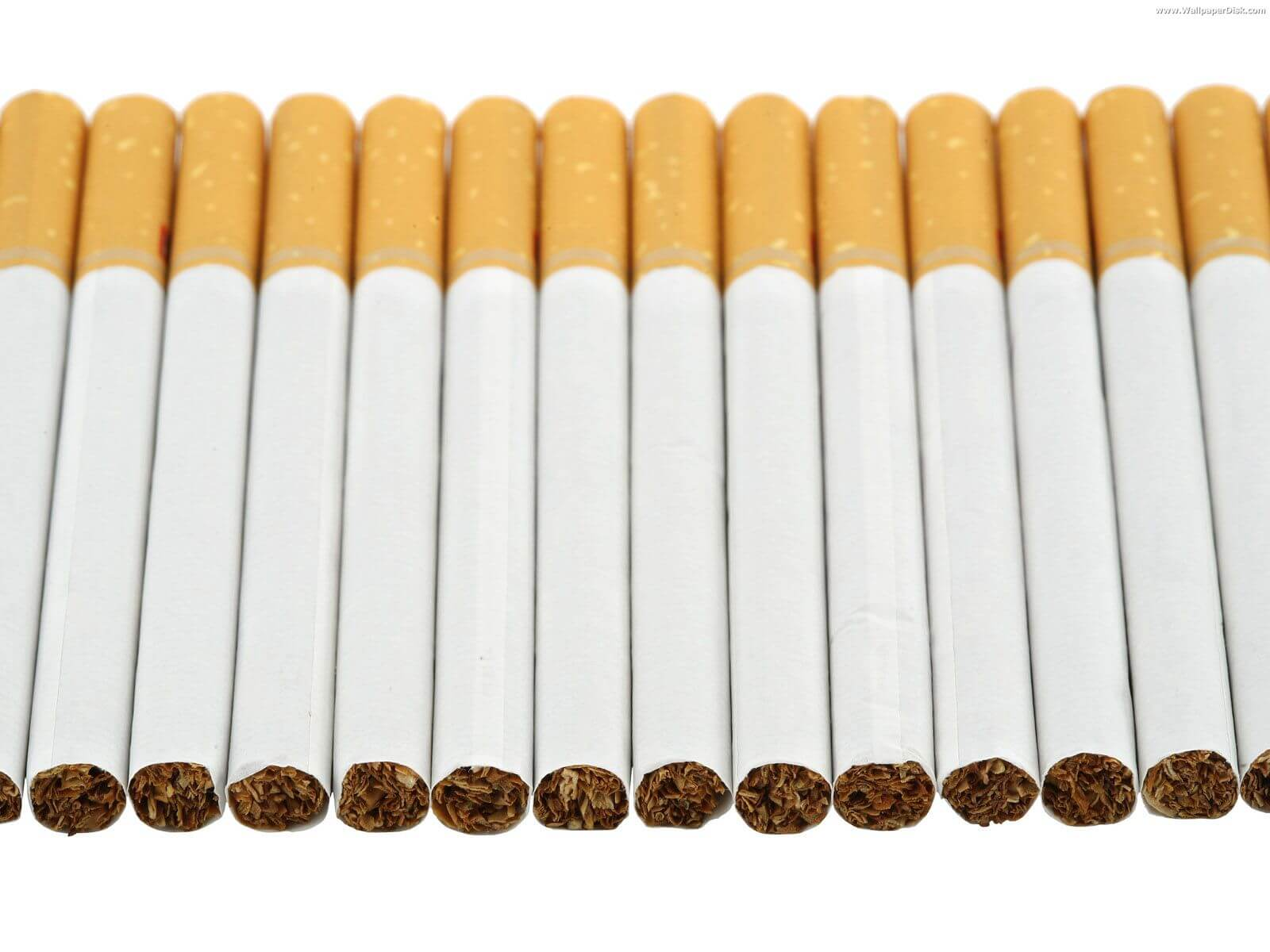superkings menthol cigarette price