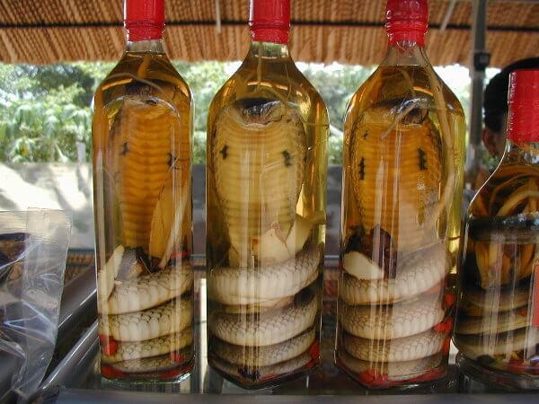 Whisky-Serpent au Laos