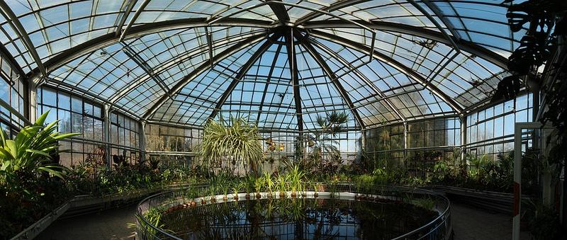 Jardin Botanique Alexandru Borza, Cluj Napoca