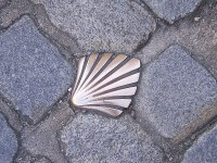 symbole compostelle