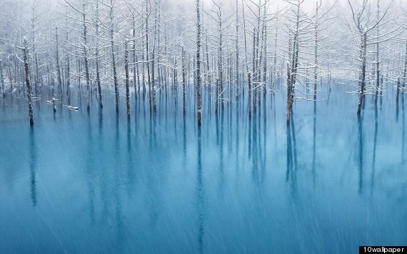 Blue Pond Japon