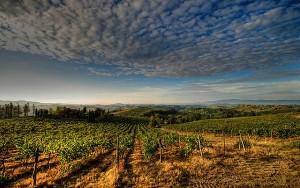 Chianti Toscane Italie
