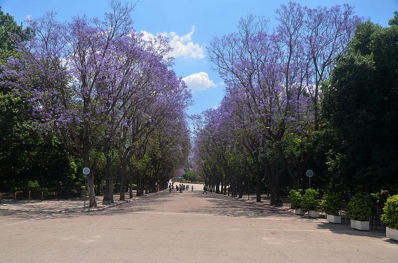 Jardin national, Athènes