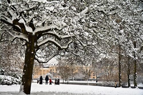 Regents Park sous la neige à Londres