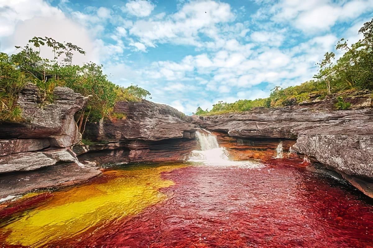 Caño Cristales, la «rivière aux 5 couleurs» de Colombie