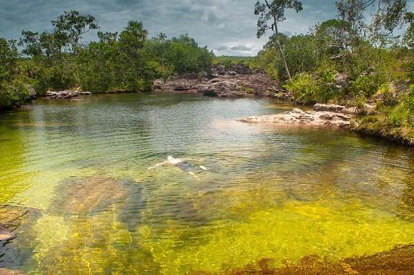 Caño Cristales Colombie