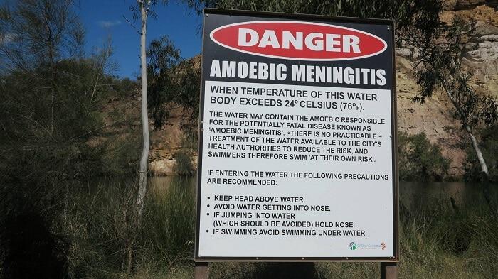 meningo-encephalite Australie
