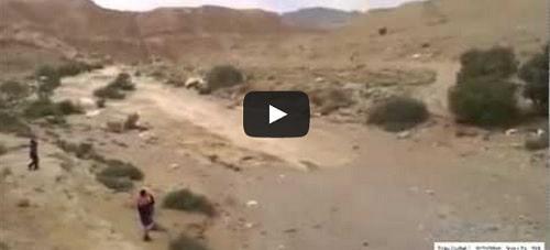 Une rivière s'écoule à nouveau en Israël après des années