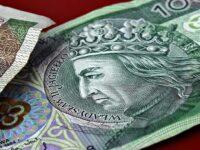 Zloty Polonais Budget