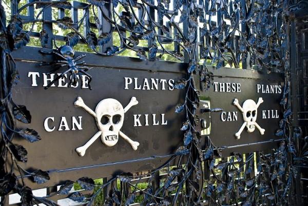 Le jardin empoisonné d'Alnwick