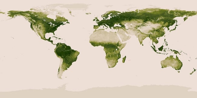 20-carte-vegetation-monde