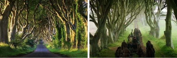 Game of Thrones, Dark Hedges, Irlande du Nord