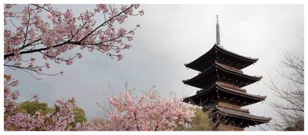 Cette vidéo du Japon va vous émerveiller