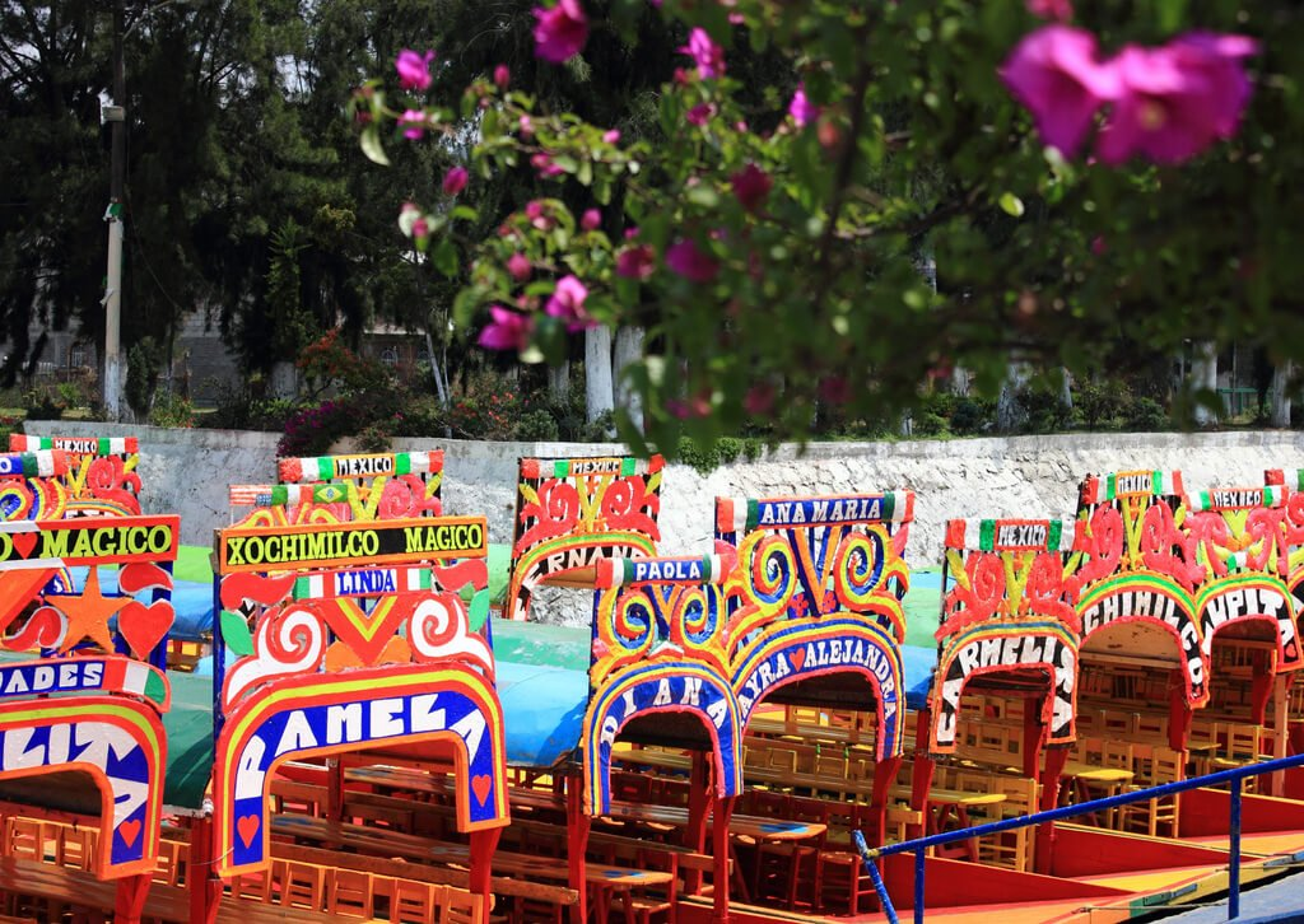 Croisi re aux jardins flottants de xochimilco for Jardin xochimilco