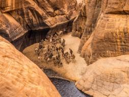Guelta d'Archei Ennedi Tchad