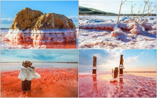 Les lagunes salées de Syvach en Crimée