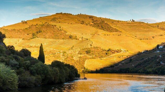 5 raisons de visiter la vallée du Douro à Porto