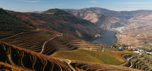 Vallée du Douro vin Porto