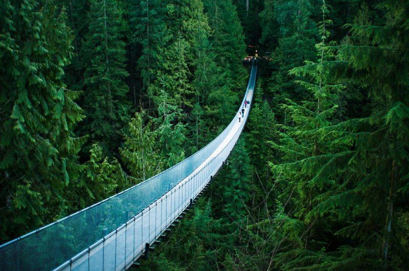 Capilano Bridge, Pont suspendu, Vancouver
