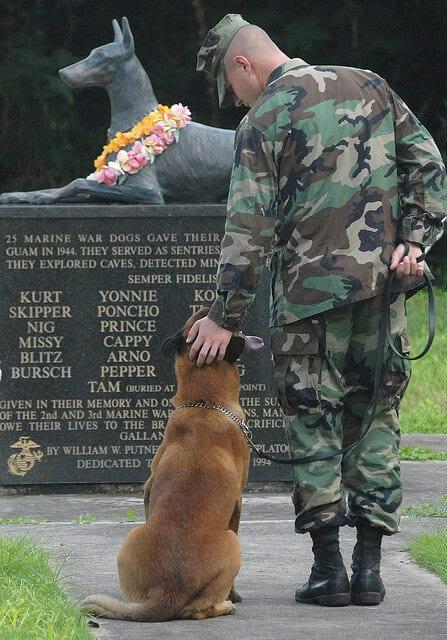 chiens memorial Guam