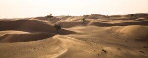 Visiter les Emirats arabes unis