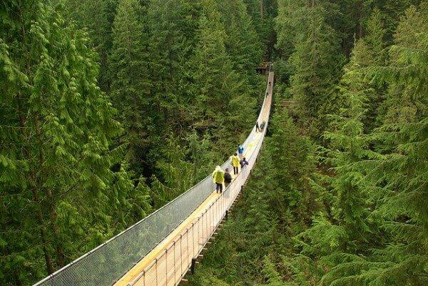 Pont suspendu Capilano Vancouver