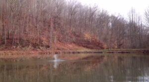 Sodium eau lac