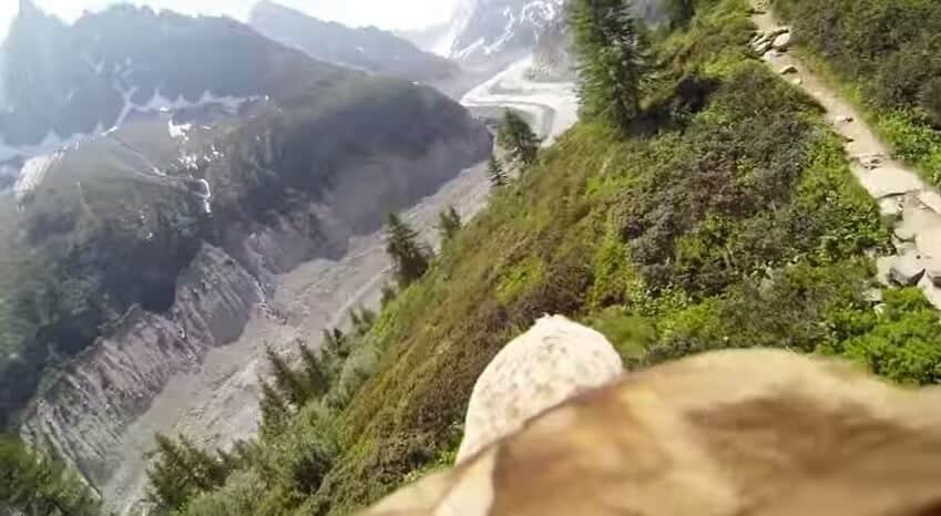 Un vol à dos d'aigle dans les Alpes